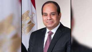 نائب بالشيوخ: الرئيس السيسي حريص على إسعاد المصريين